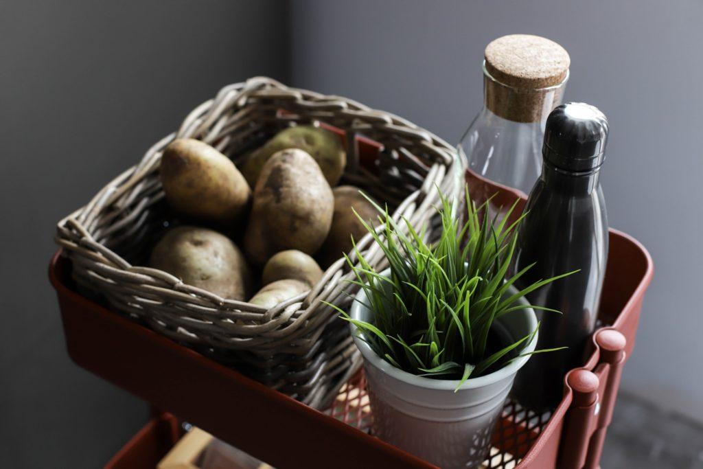Erdäpfel selber in der Wohnung oder auf dem Balkon anbauen