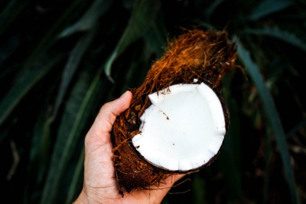 Zahnpasta mit Kokosöl selber herstellen